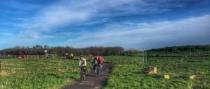 E11 riders Jan 2016 crop